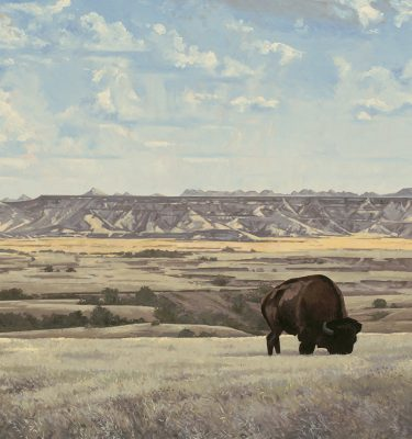 Rural America/Landscapes