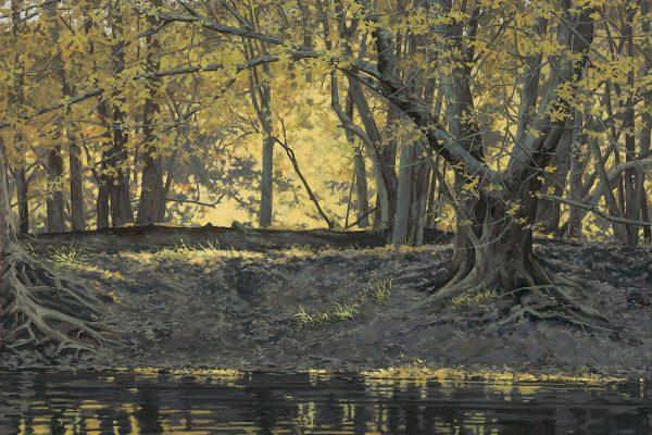 Autumn Light ReflectedOil on Canvas