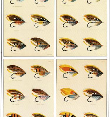 Atlantic Salmon Fly Print 1