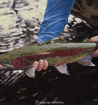 Dark Water - Rainbow Trout