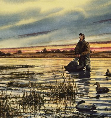 Waterfowl Note Cards