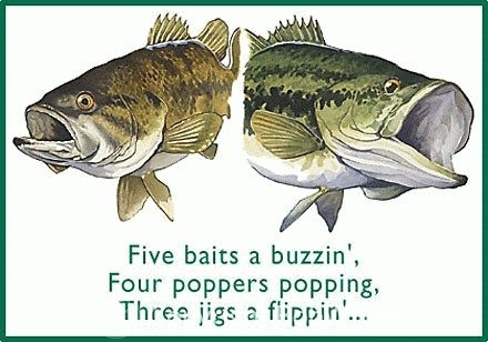 Five Baits a Buzzin Holiday Cards