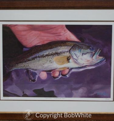 Framed Small Fry-Largemouth Bass