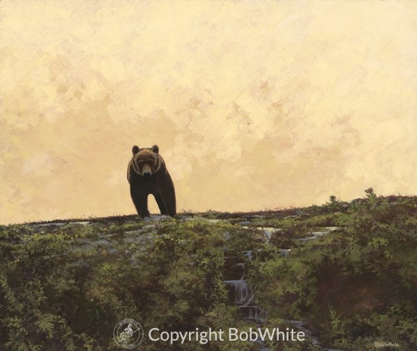 Icon - Alaskan Brown Bear Print