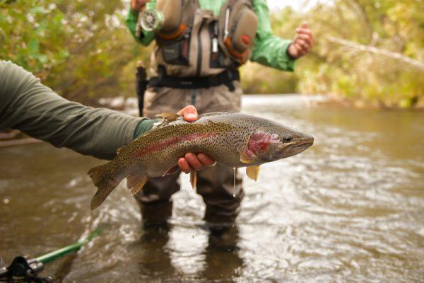 Bill 2nd rainbow on Grant