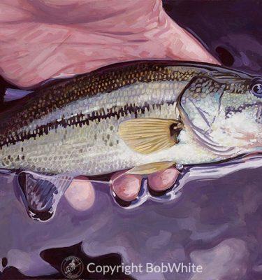 Small Fry - Largemouth Bass