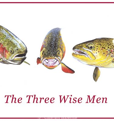 Three Wise Men Trout Holiday Cards