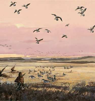 Anticipation Canada Goose Hunting Printers Proof