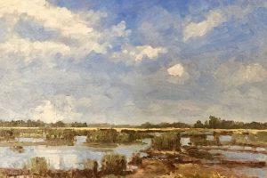 24 - Argentine Marsh